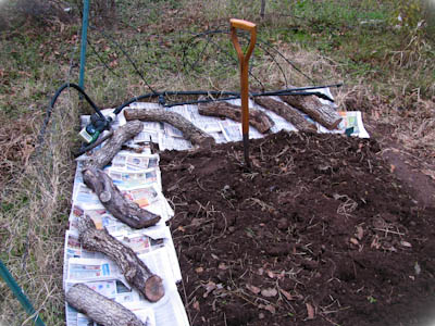 Garden pathway around raised bed covered with newspaper and logs.