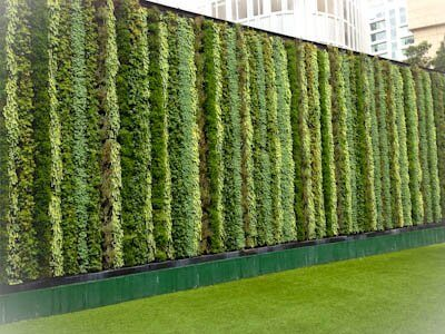 living wall with vertical bands of different colered sedums