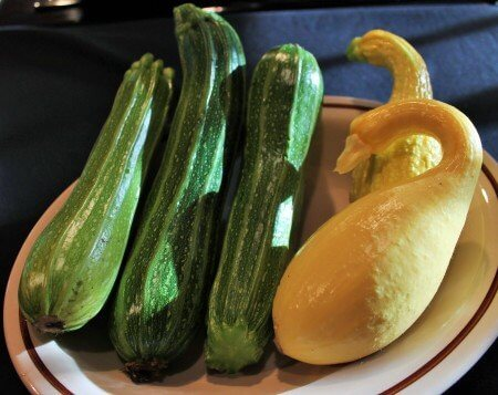 Zukes and Summer Squash