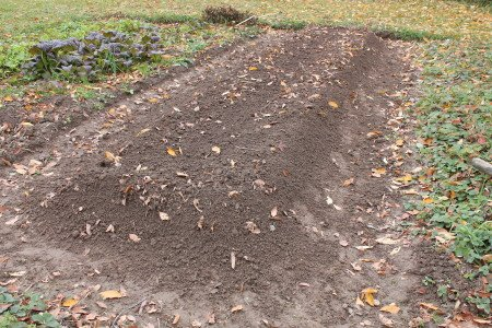 Open Raised Bed