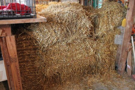 Straw Bale Cold Storage